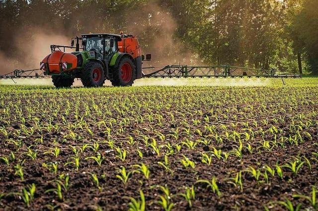 Warum Schweizer Landwirte am Hochrhein deutsche Flächen kaufen