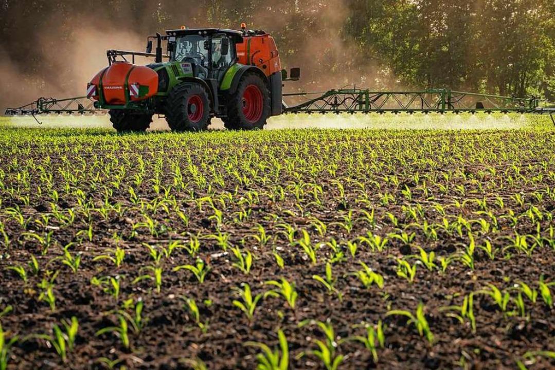 Landkauf im großen Stil ist in Südbade...8211; mit einer Ausnahme (Symbolbild).  | Foto: Fritz Rupenkamp (imago-images)