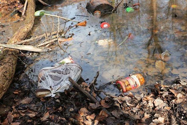 Wilde Müllansammlung im Müllheimer Eichwald