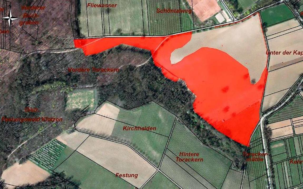 Das rot markierte Gebiet  im Gewann &#...systematisch  nach Granaten abgesucht.  | Foto: Gemeinde Efringen-Kirchen