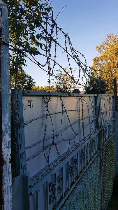 Stacheldraht umzäunt manche Grundstück...heimer Galgenberg, was verboten ist.    | Foto: Christian Kramberg