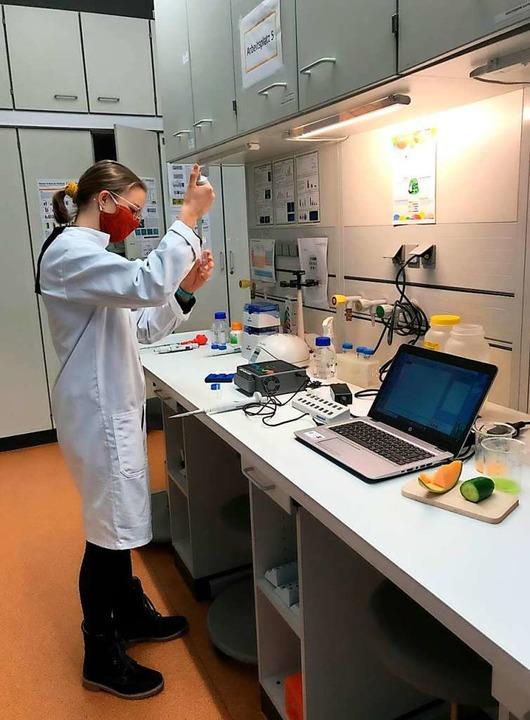 Paula Fischer experimentiert mit Gemüse, das Vitamin C zerstören kann.  | Foto: phaenovum