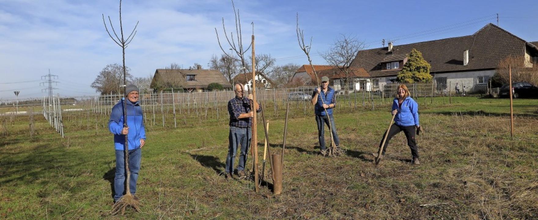 Hochstammbäume für den Naturschutz pfl...er Waselikowski und Christine Hercher.  | Foto: Dorothee Philipp