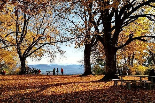 Goldener Oktober bei der Hohen Flum