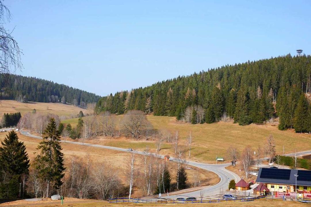 Die Fläche zwischen Straße und Waldran...tungen rechnen die beiden Investoren.   | Foto: Eva Korinth