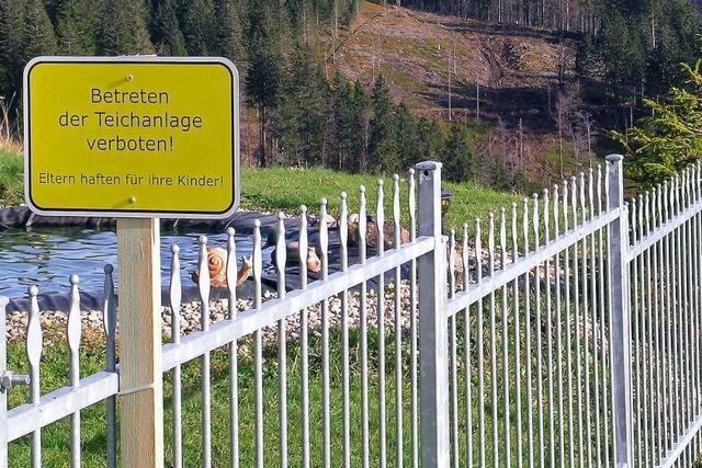 Feldberg verboten auf der Todtnauer Hütte
