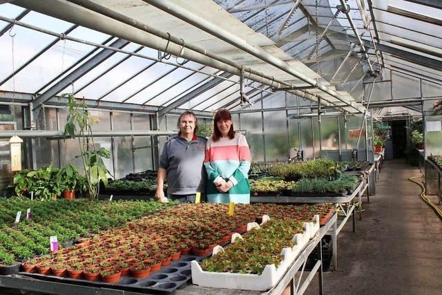 Gärtner im Kreis Lörrach freuen sich über eine Perspektive