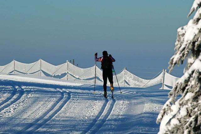 Von leicht bis anspruchsvoll: Loipen und Skigebiete im Schwarzwald
