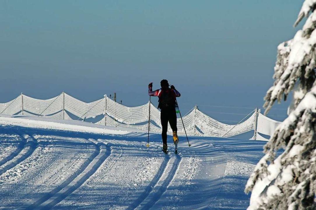 Skilanglauf    Foto: Jürgen Ruoff