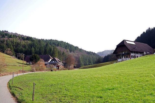 Die Höfe im Michelbrunn in Schuttertal wollen bald ans Wassernetz