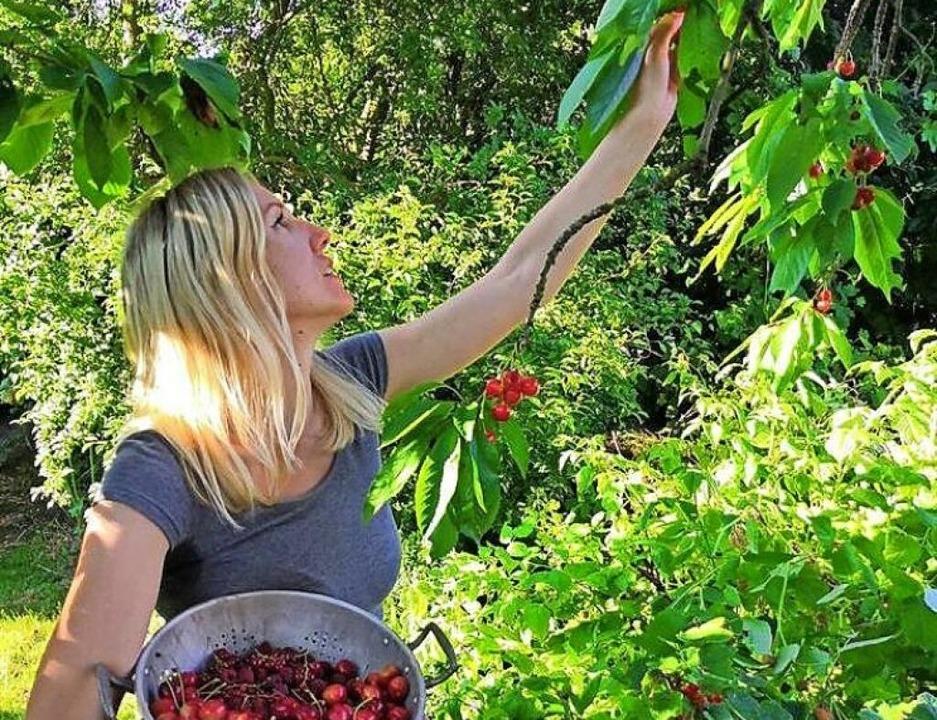 Obstgehölze dürfen im Garten für die Sinne nicht fehlen.    Foto: BGL