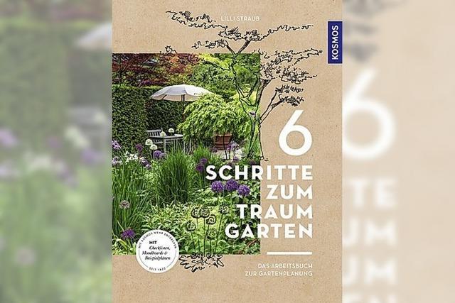 Experiment Gartenplanung
