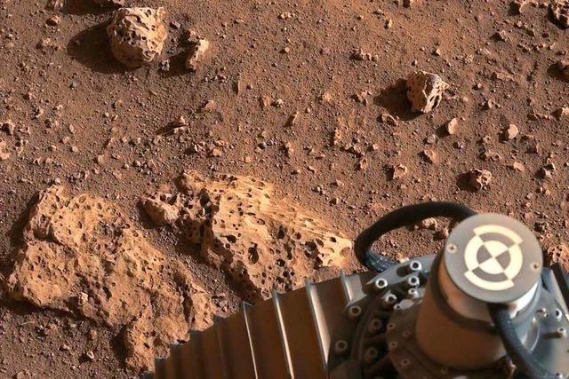 Fotos: Rover