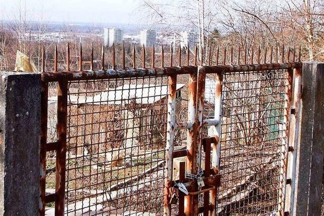 Unkenntnis ist ein Problem bei illegal errichteten Bauten und Zäunen auf dem Galgenberg