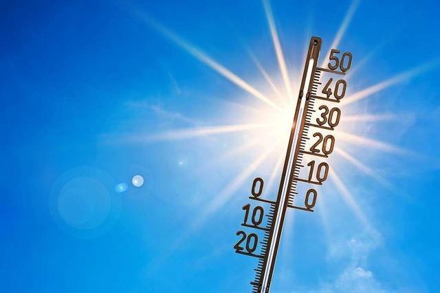 Winter zum zehnten Mal in Folge zu warm – Februar der Extreme