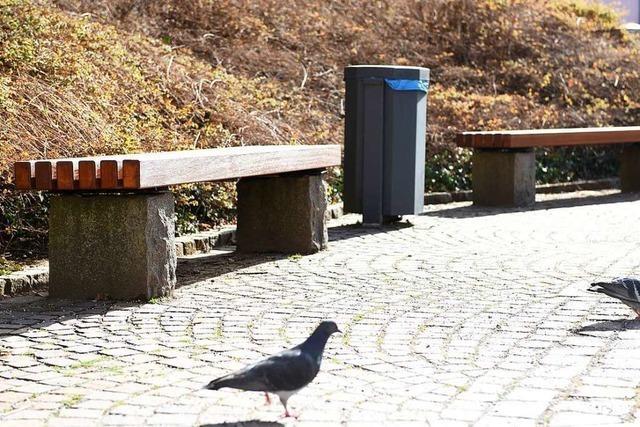 Freiburg-Ebnets Räte hätten gern ein günstiges Sitzbank-Modell