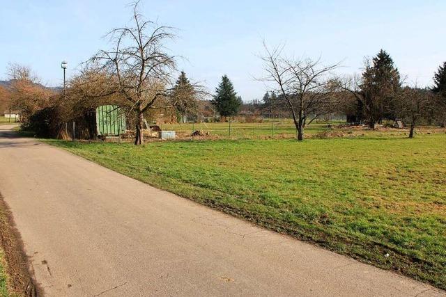 Das Wohngebiet am Rhein in Schwörstadt hat gute Chancen auf Verwirklichung
