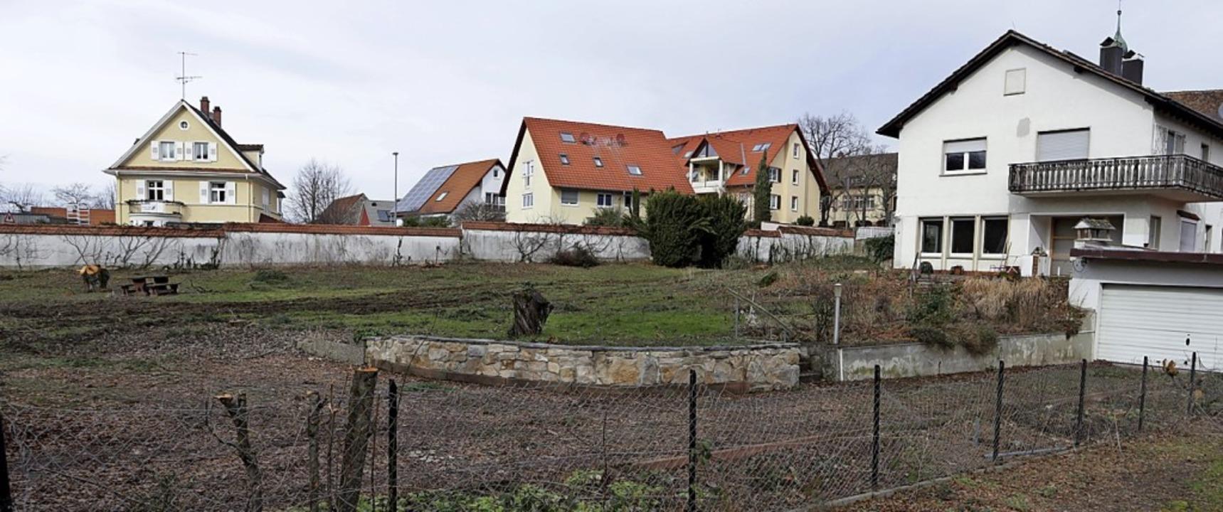 Dieses private Grundstück  beim Klemmbach in Müllheim wurde gerodet.    Foto: Alexander Huber