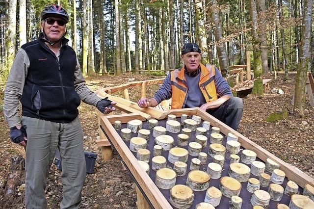 Die Waldkugelbahn soll im Juni eingeweiht werden