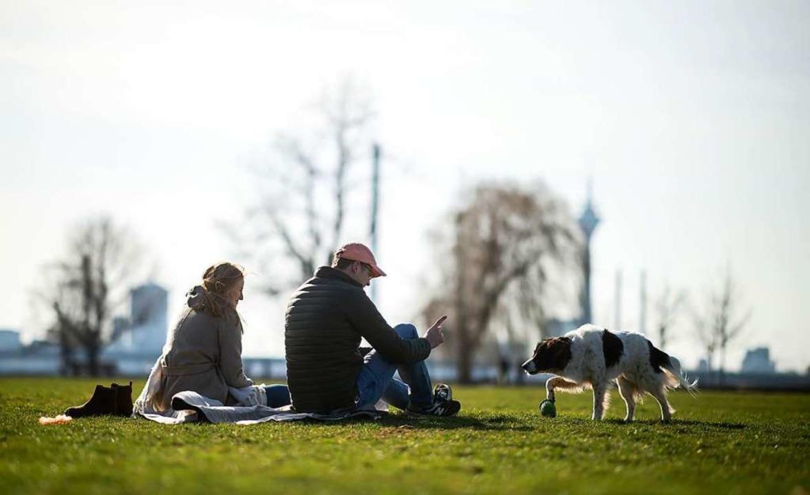 Brauchen Hundehalter bald einen Hundef...h einer Beiß-Attacke Rufe danach laut.  | Foto: Jonas Güttler (dpa)