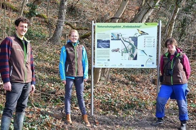 Das Krebsbachtal in Weil am Rhein bekommt Infotafeln
