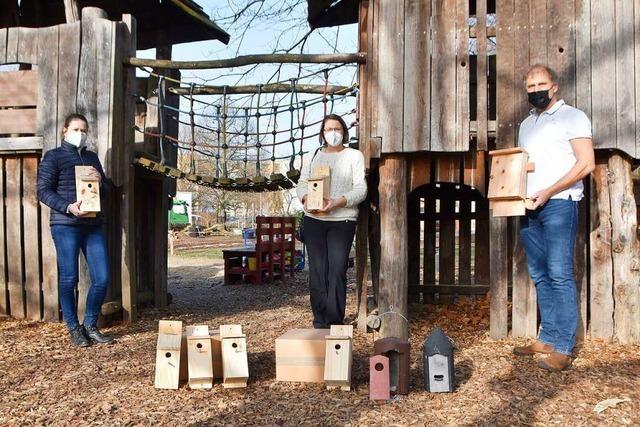 Kita-Kinder aus Rheinfelden bauen Nistkästen für Fledermäuse