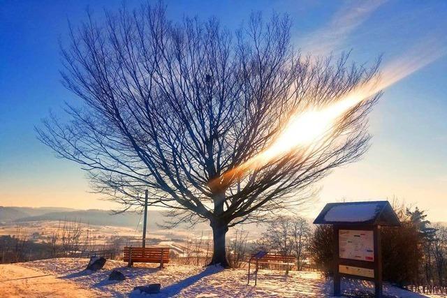 Wetterstation Ettenheimmünster meldet Rekordtemperaturen im Februar