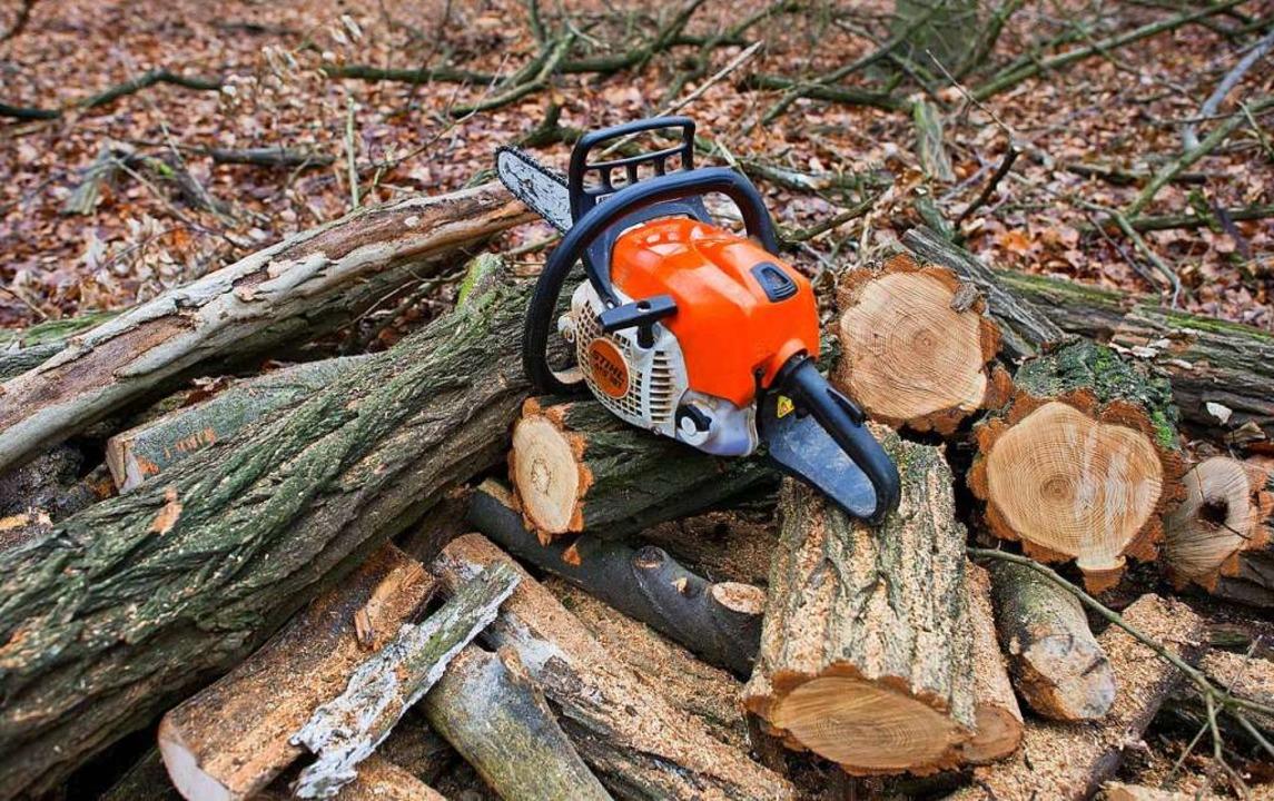 Die Holzdiebe haben drei jeweils sechs...nert und anschließend abtransportiert.  | Foto: Patrick Pleul