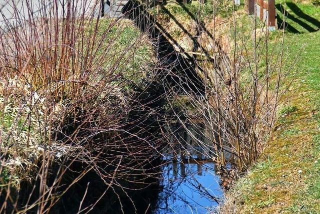 Der Dorfbach in Brombach soll einen Kanal bekommen