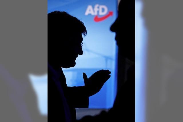 Verfassungsschutz hat AfD im Visier