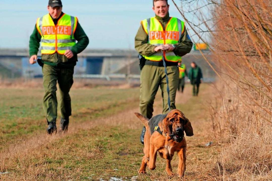 Spürhund im Polizeieinsatz  | Foto: Picture Alliance/dpa