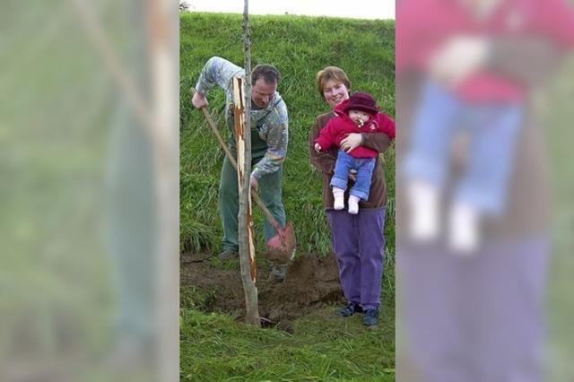Ein Baum für jedes Baby