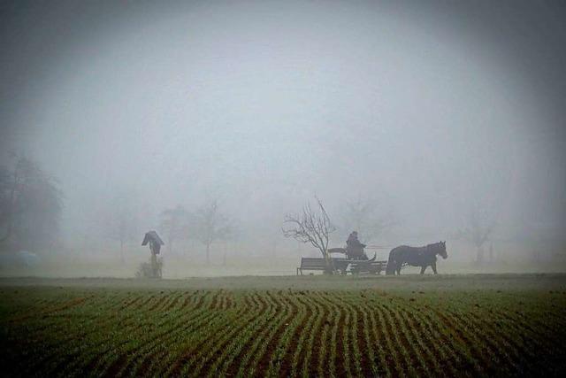 Nebelgestalt bei Heuweiler