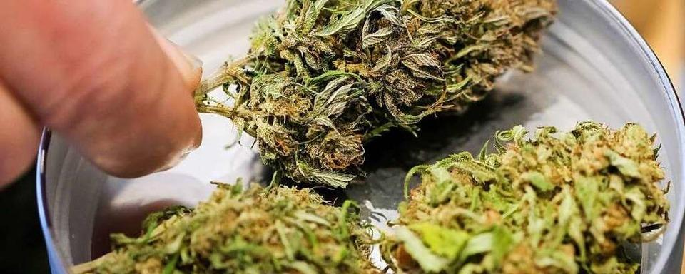 E-Biker mit 50 Gramm Marihuana erwischt