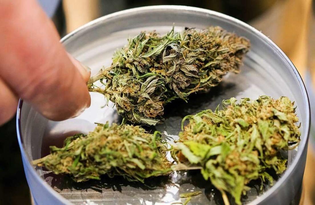 Der Besitz von Marihuana  ist in Deutschland verboten.  | Foto: Jens Kalaene (dpa)