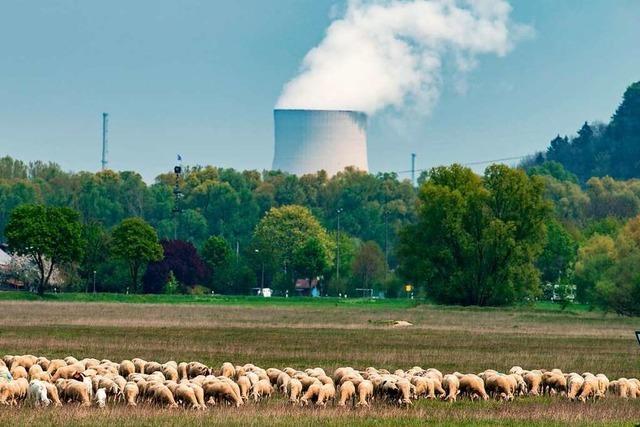 Bund zahlt für Atomausstieg rund 2,4 Milliarden Euro an Energieversorger