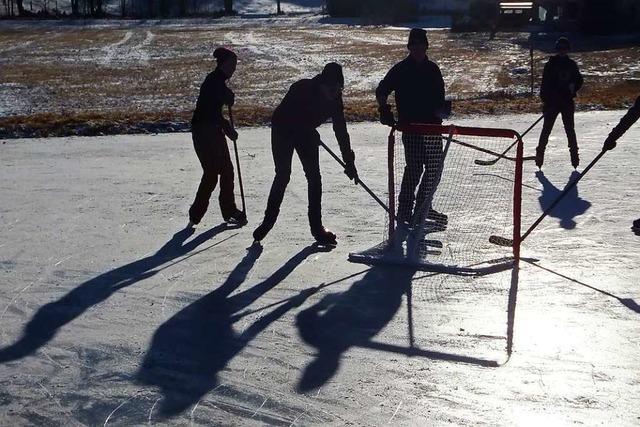 Schattenspieler auf dem Eisweiher Hinterzarten