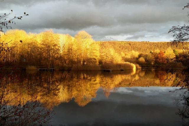 Der Lörracher Grüttsee strahlt in leuchtenden Farben