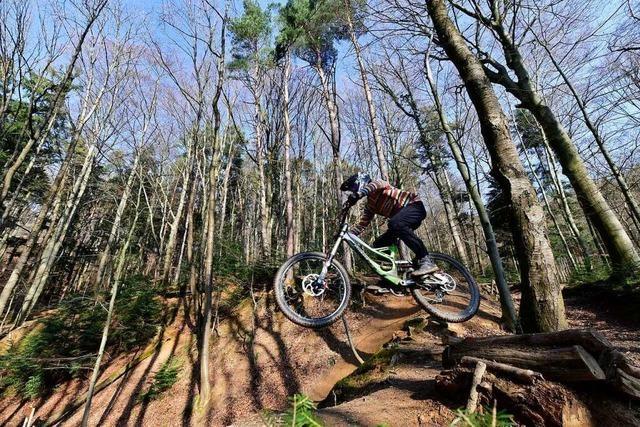 Mountainbiker im Kreis Lörrach sind auf dem Weg zu legalen Trails
