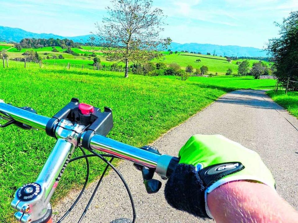 Ab ins Grüne: Auch im Schwarzwald gibt es sanfte Touren.  | Foto: Sattelberger
