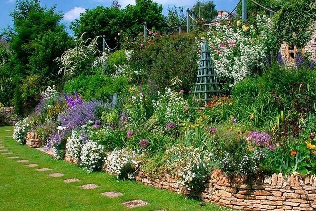 So bepflanzen Sie insektenfreundlich auch an extremen Standorten