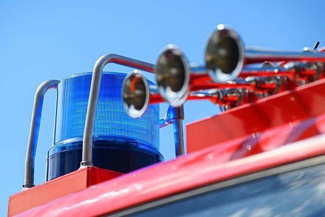 Feuerwehr löscht brennenden Kamin in Hasel