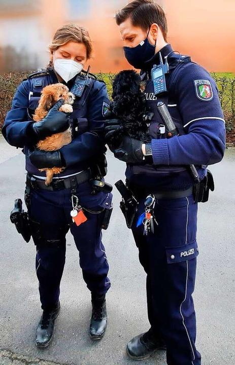 Die Polizei kontrolliert Tiere aus einem Welpentransport.  | Foto: Polizei Märkischer Kreis (dpa)