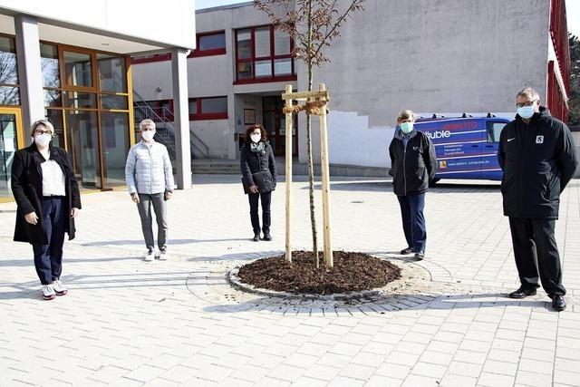 Sanierung des Schulhofs abgeschlossen