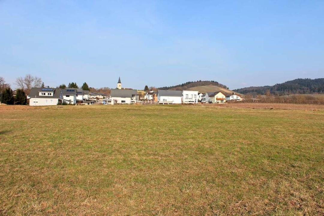 Das geplante Baugebiet Holzweg IV besc...Dottingens bereits seit vielen Jahren.  | Foto: Jennifer Ruh