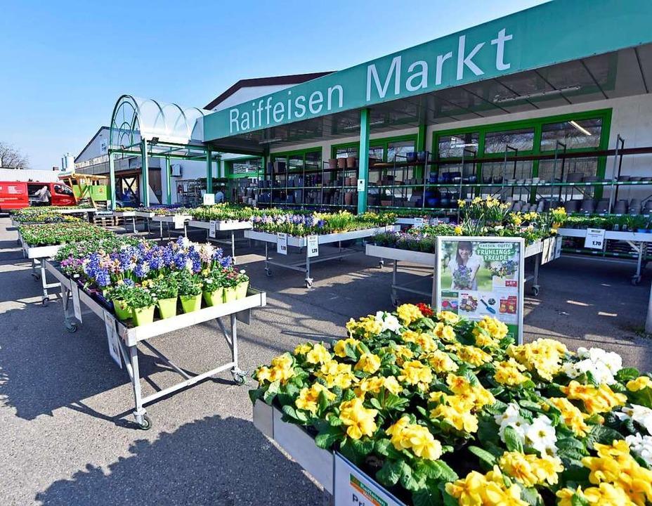 Blumen vor dem Raiffeisen-Markt auf der Haid  | Foto: Michael Bamberger