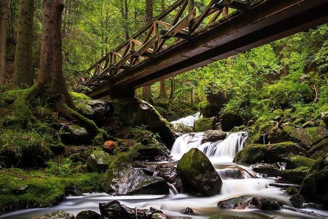 Magische Orte im Hochschwarzwald