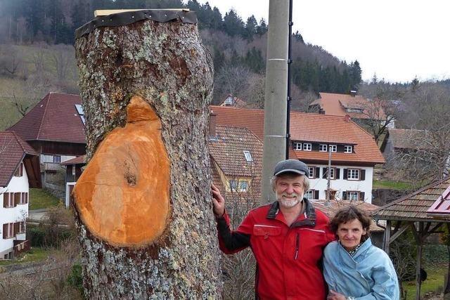 Der Stumpf eines gefällten Baums im Kleinen Wiesental ist nun ein Bienenstock
