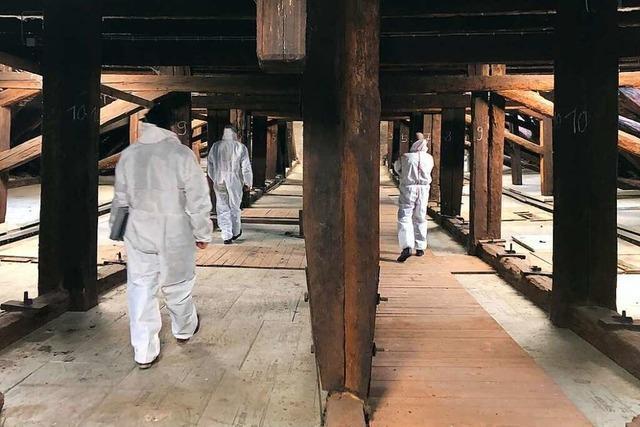 Dachstuhl von Herbolzheimer Kirche muss dringend repariert werden