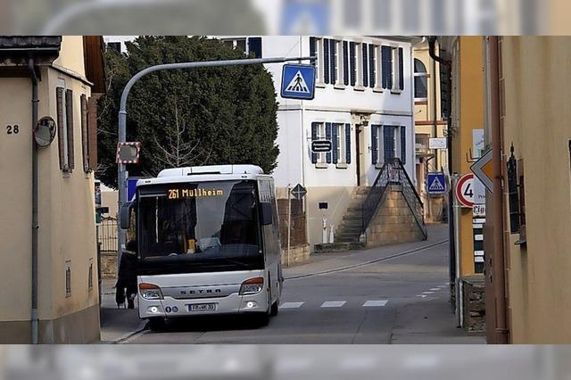 Sulzburg fordert deutlich mehr Busse